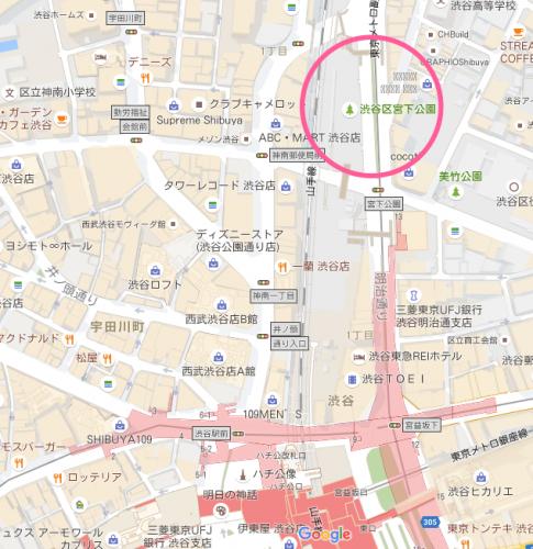 ミニリュウの巣 渋谷