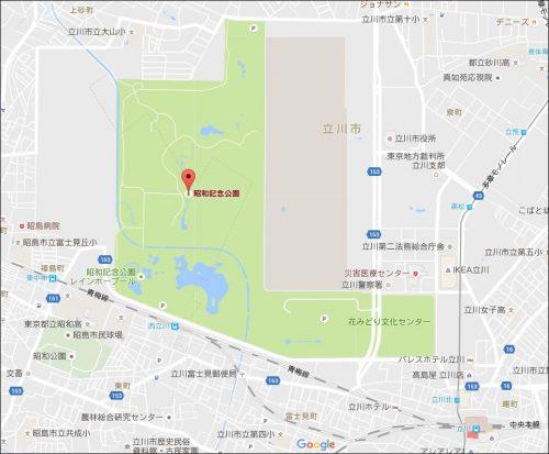 ピカチュウ 巣 東京