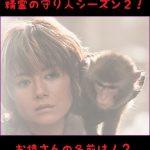 精霊の守り人のお猿さんが可愛い!名前や肩乗りの理由をチェック!
