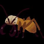 ヒアリに効く殺虫剤や虫よけはどれ?見分け方や応急処置についても!