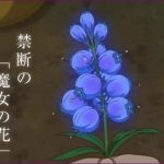 メアリと魔女の花の夜間飛行のモデルの花や花言葉!実在するの?
